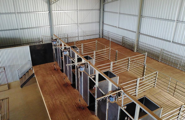 Shearing shed fitout